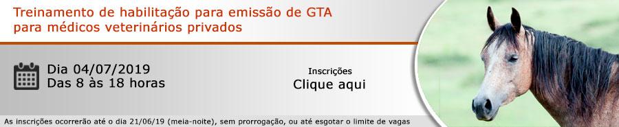 Habilitação GTA - Dia 04/07/2019 - São Paulo/SP