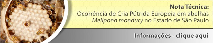 NOTA TÉCNICA CEDESA N° 03/2019 - Ocorrência de Cria Pútrida Europeia em abelhas Melipona mondury (Nome vulgar Bugia) no Estado de São Paulo.