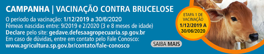 Secretaria de Agricultura e Abastecimento de São Paulo prorroga prazo para entrega da declaração de vacinação contra Brucelose
