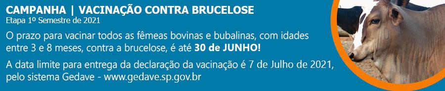 Brucelose 2021