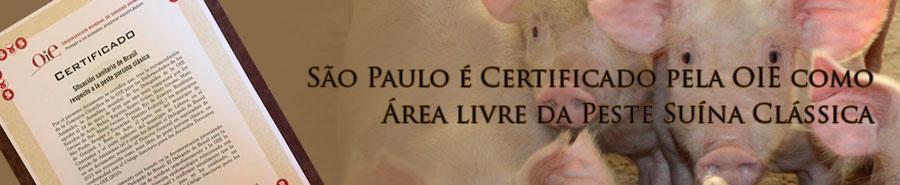 São Paulo é Certificado pela OIE como Área livre da Peste Suína Clássica