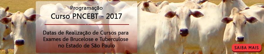 Curso de Treinamento em Métodos de Diagnóstico e Controle da Brucelose e Tuberculose Animal