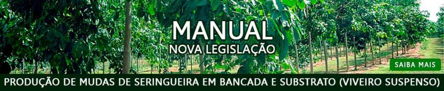 Nova legislação Manual - Produção de mudas de seringueira em bancada e substrato (viveiro suspenso)